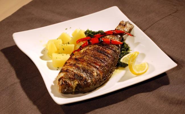 Fisch  | Restaurant Mediterran  im Weinegg